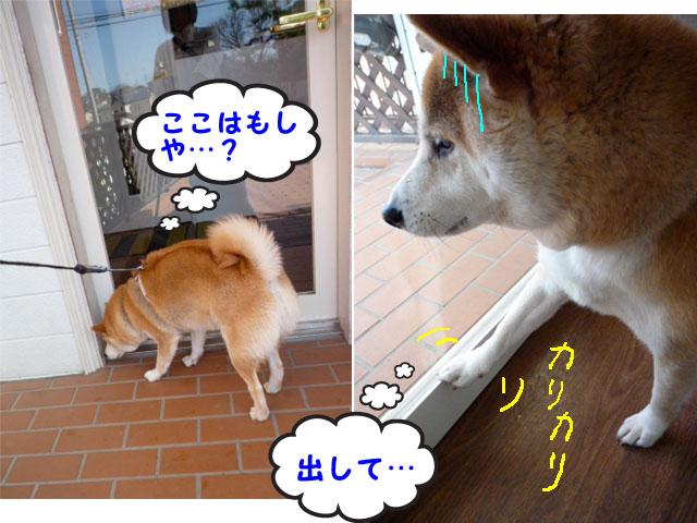 10日ブログ9.jpg