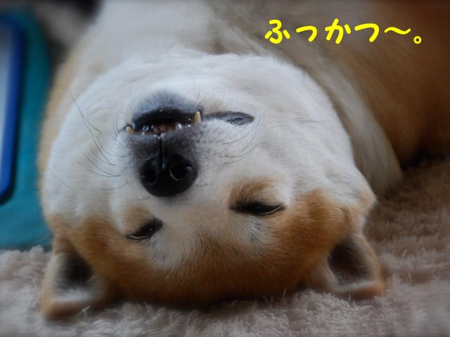 16日ブログ1.jpg