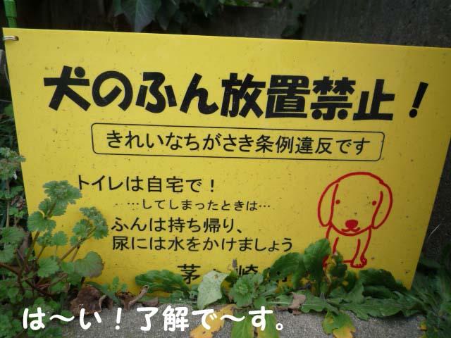16日ブログ3.jpg
