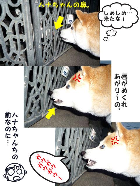16日ブログ7.jpg