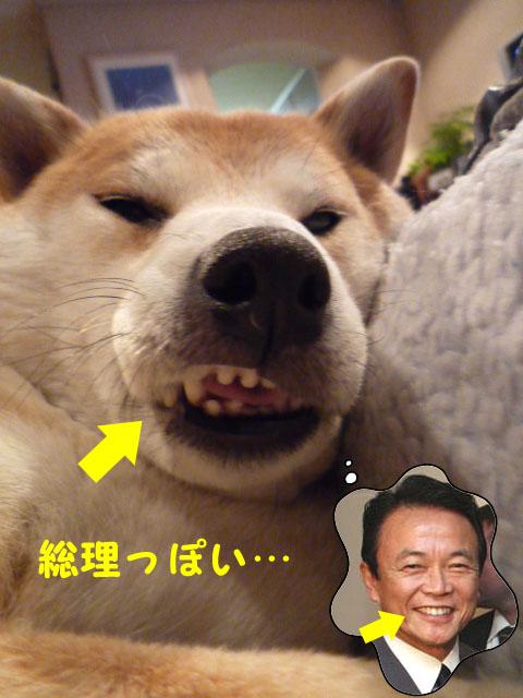 17日ブログ4.jpg