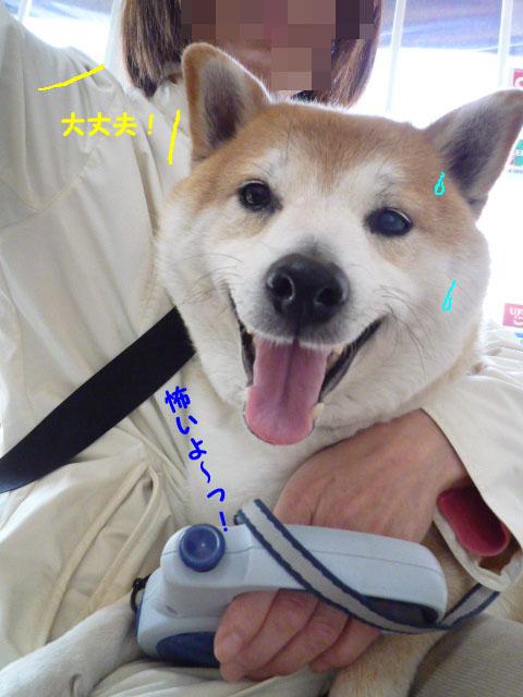 18日ブログ11.jpg