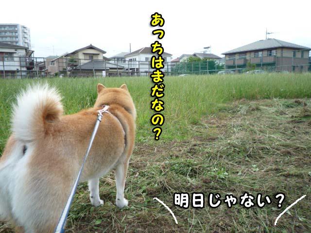 18日ブログ5.jpg