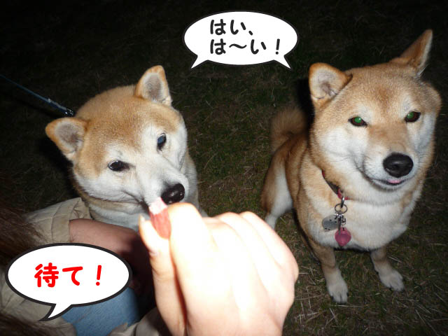 21日ブログ6.jpg