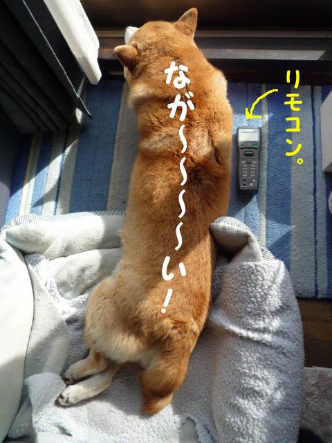 26日ブログ13.jpg