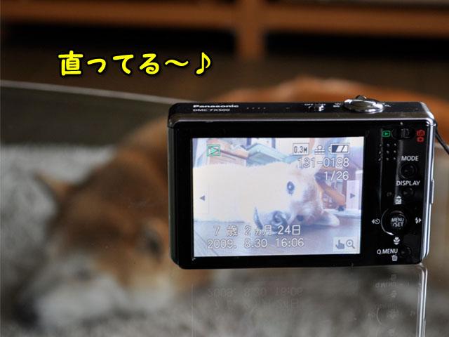 2日ブログ12.jpg