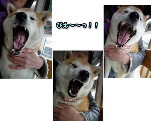 30日ブログ11.jpg