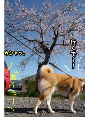 30日ブログ3.jpg