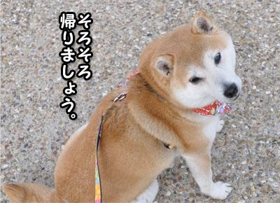 5日ブログ13.jpg