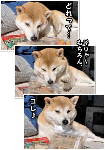 5日ブログ19.jpg