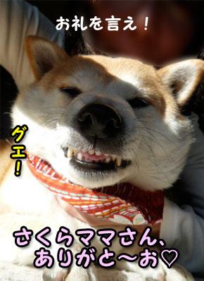 5日ブログ21.jpg