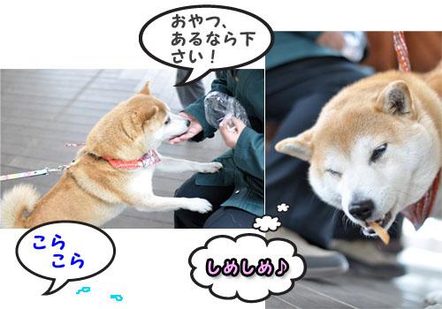 5日ブログ7.jpg