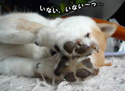 7日ブログ1.jpg