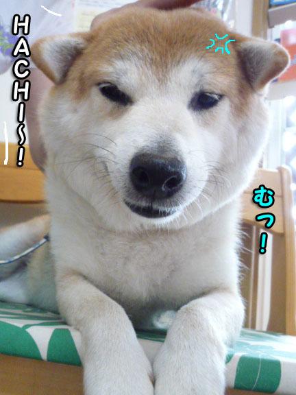 8日ブログ15.jpg