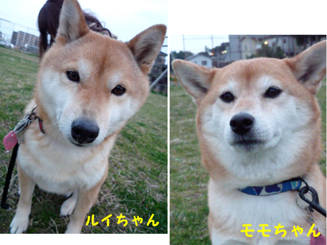 9日ブログ13.jpg