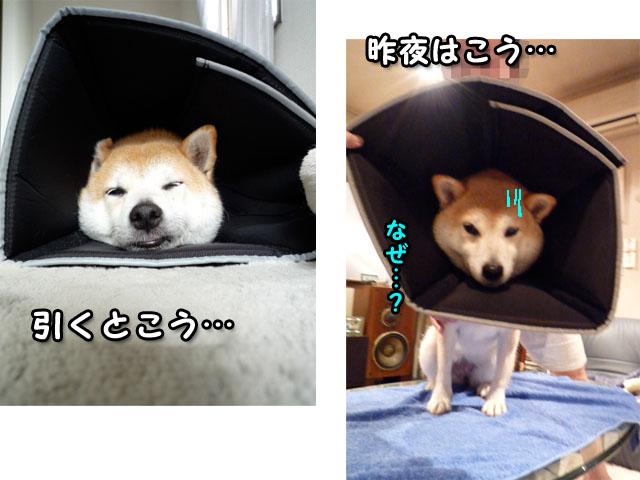 9日ブログ2.jpg